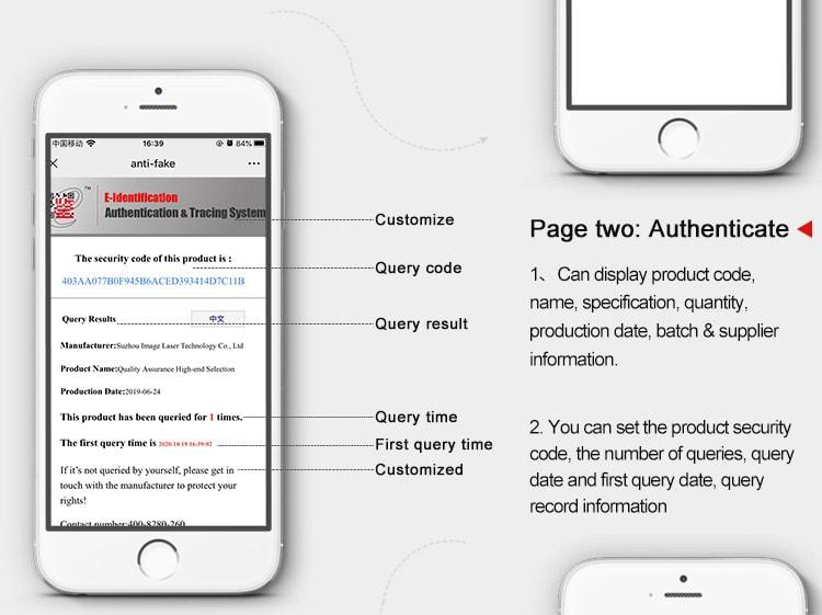 E Identification Authentication Page